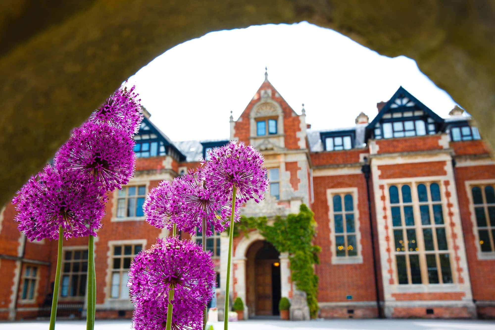 Front of Frensham Heights school with Purple Aliums