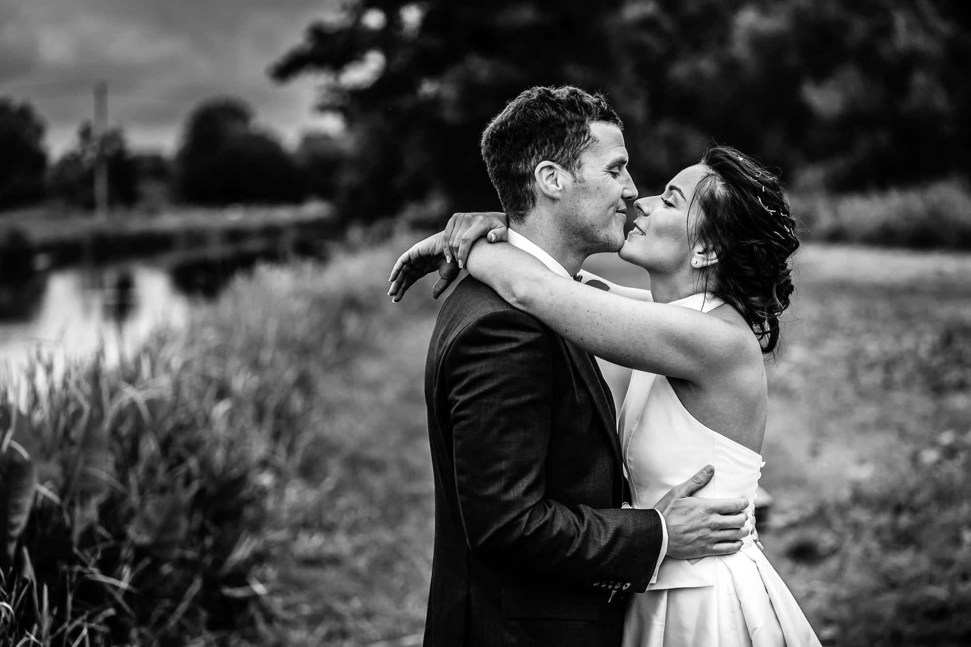 Greyhound on Test Wedding Photography