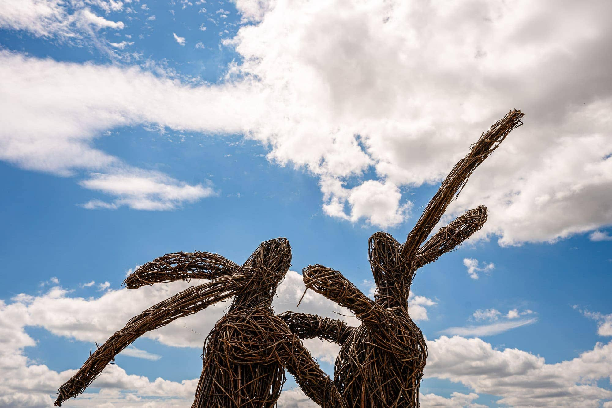 Two Fighting Hares statue at De Vere Wokefield Estate
