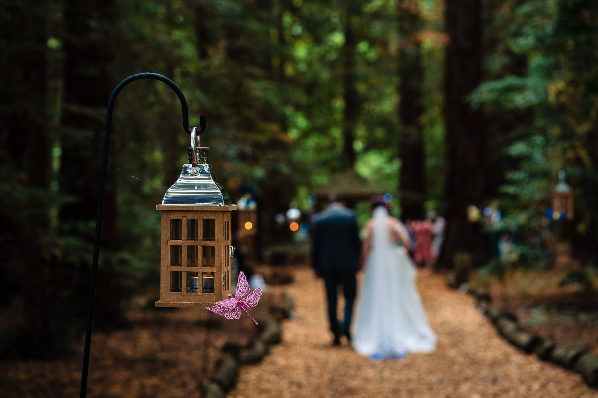 Two Woods Estate Wedding 65 3867