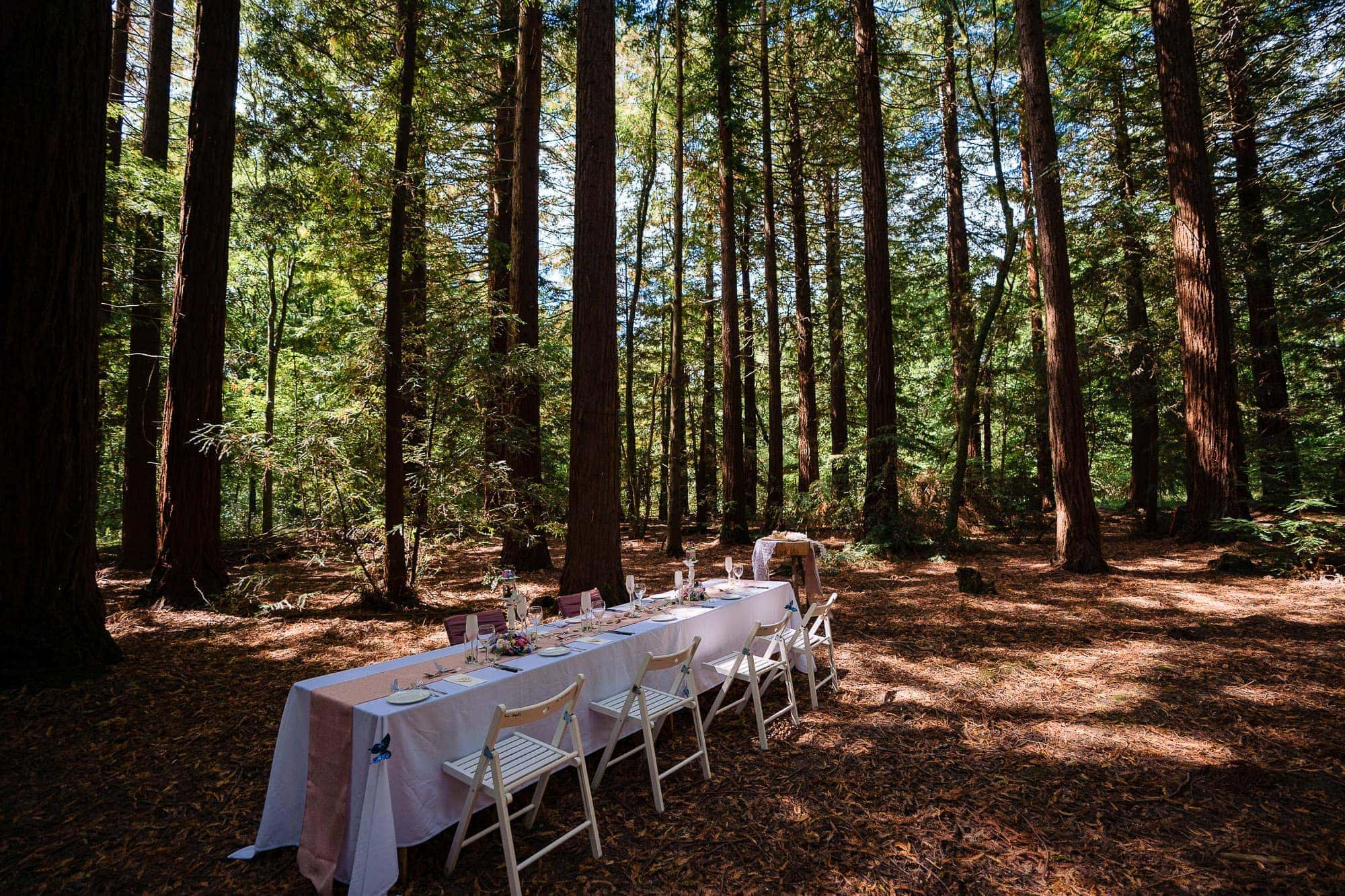 Two Woods Estate Wedding 77 8810