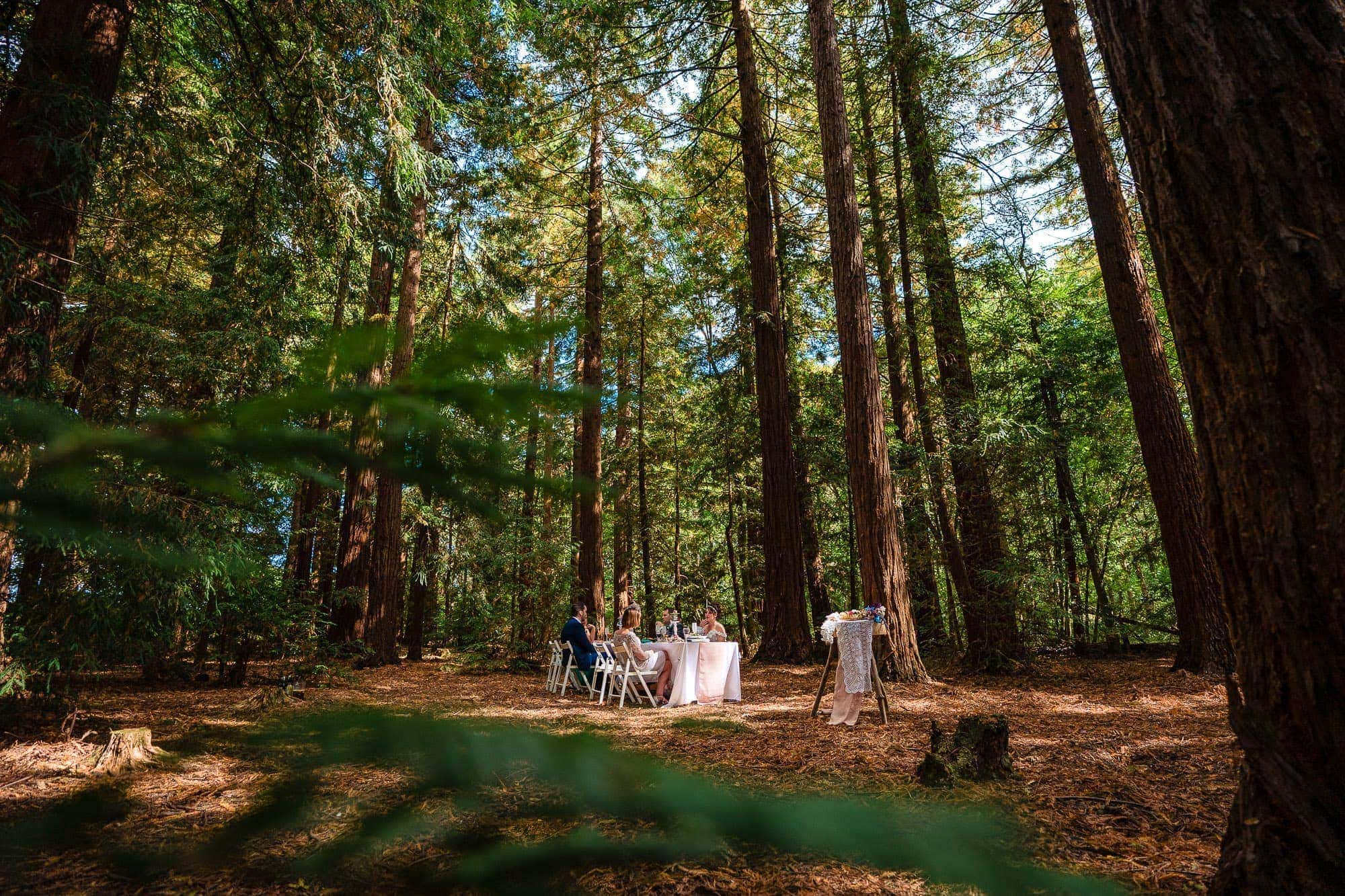 Two Woods Estate Wedding 81 0030